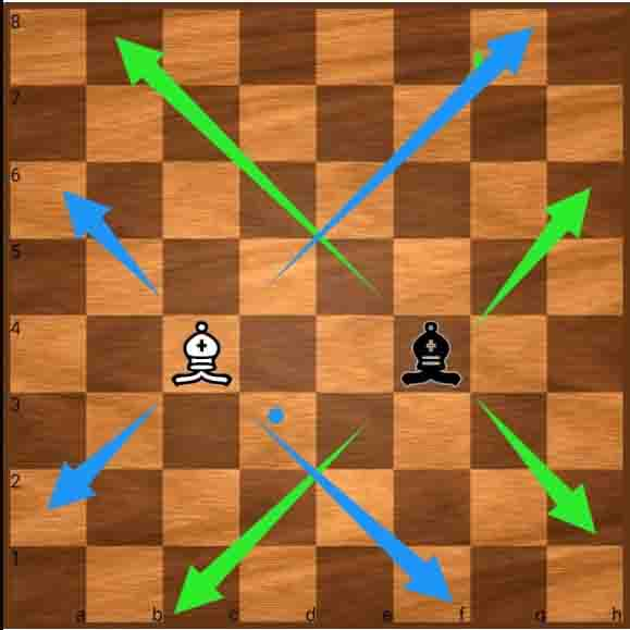 chess rules pdf in hindi